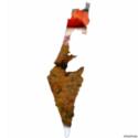 israel-falafel